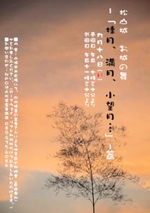 geisha-20110918