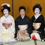 geisha2011